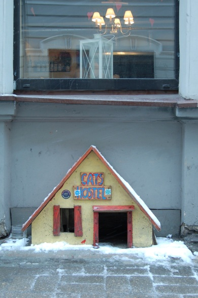 Cats Hostel