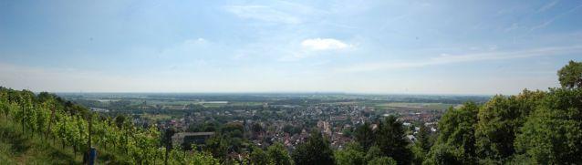 Blick auf die Rheinauen