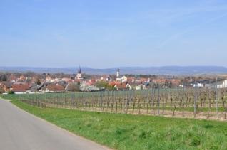 Zellertal - 05