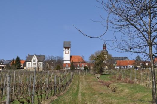 Zellertal - 51